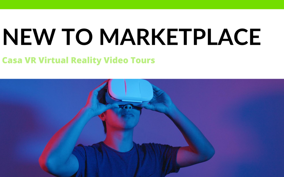 Virtual Reality Video Tours